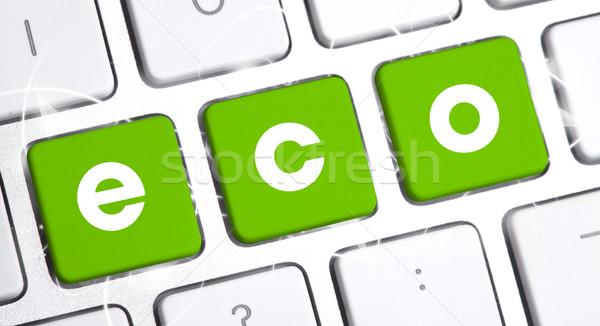Toetsenbord eco optie witte internet werk Stockfoto © ra2studio