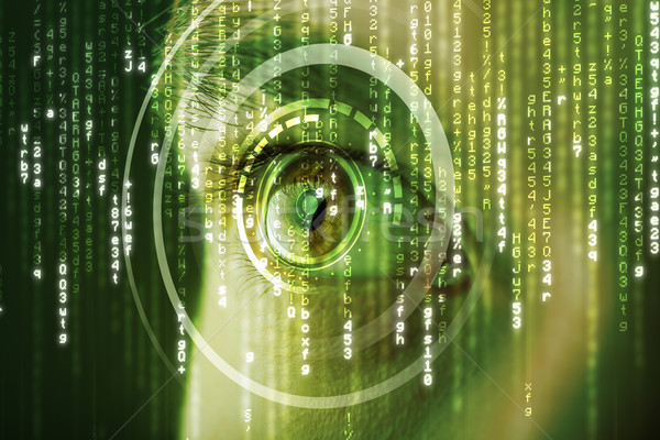 Modern cyber woman with matrix eye  Stock photo © ra2studio