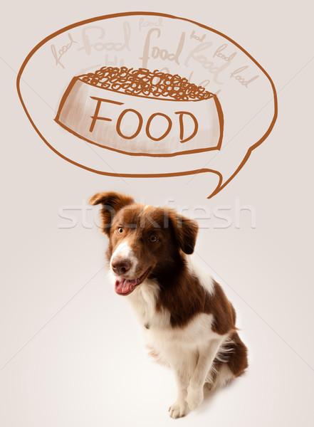 かわいい ボーダーコリー 夢 食品 ブラウン 白 ストックフォト © ra2studio