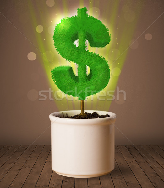 Dolar işareti ağaç dışarı saksı iş Stok fotoğraf © ra2studio