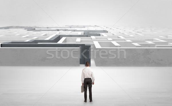 Businessman starting a stated labyrinth Stock photo © ra2studio