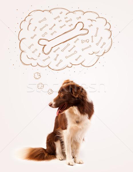Juhászkutya gondolatbuborék gondolkodik csont aranyos barna Stock fotó © ra2studio