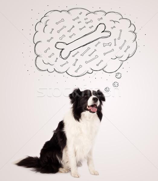 ボーダーコリー 思考バブル 思考 骨 かわいい 黒白 ストックフォト © ra2studio