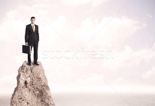 幸せ ビジネスマン 立って 崖 成功した 販売 ストックフォト © ra2studio