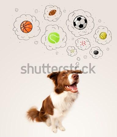 Cute psa myśl pęcherzyki brązowy Zdjęcia stock © ra2studio