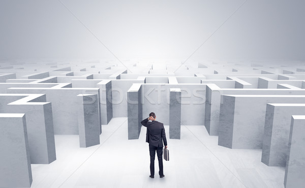 Businessman can not decide which entrance he chose outside of the maze Stock photo © ra2studio