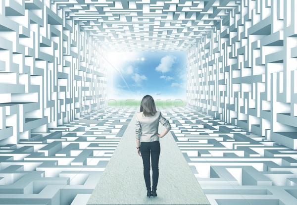 Zakenvrouw labyrint geslaagd gecompliceerd vrouw vrouwen Stockfoto © ra2studio
