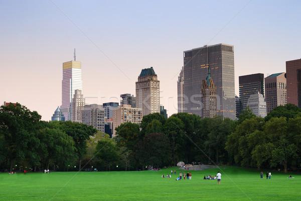 New York City Central Park schemering panorama Manhattan skyline Stockfoto © rabbit75_sto