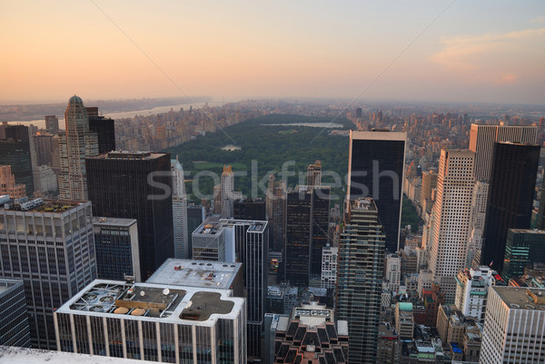 New York City Central Park aerial view Stock photo © rabbit75_sto