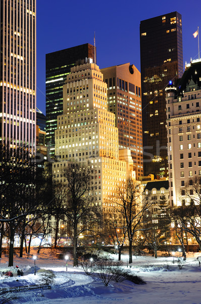 New York City Manhattan Central Park panorama hiver neige Photo stock © rabbit75_sto