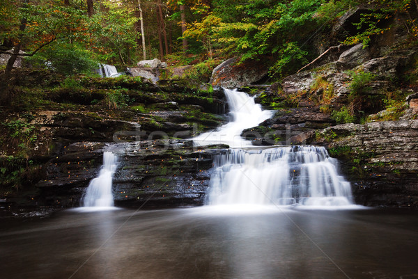 Waterval berg bomen rotsen najaar Pennsylvania Stockfoto © rabbit75_sto