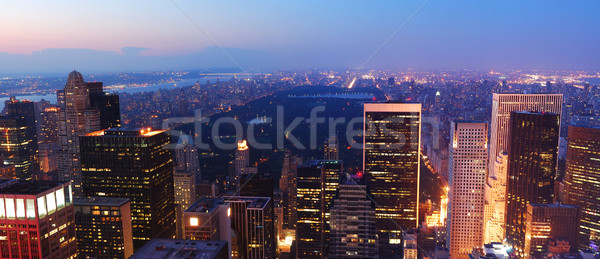 New York City Central Park Manhattan panorama Stock photo © rabbit75_sto