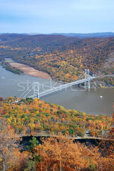 Autumn bridge Stock photo © rabbit75_sto