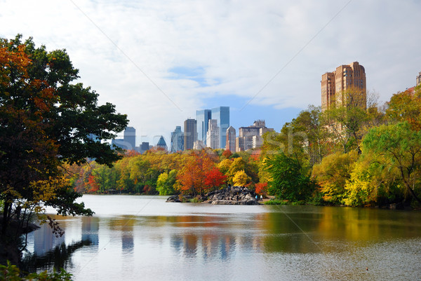 New York City manhattan Central Park Panorama Herbst See Stock foto © rabbit75_sto