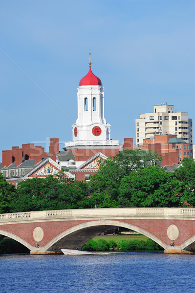 Harvard University campus Stock photo © rabbit75_sto
