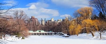New York City manhattan Central Park panorama inverno gelo Foto stock © rabbit75_sto