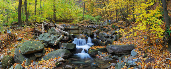 Autumn creek panorama with yellow maple trees Stock photo © rabbit75_sto