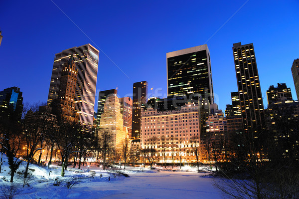 New York City manhattan Central Park panorama inverno neve Foto stock © rabbit75_sto