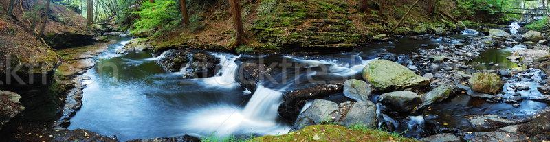 Enseada panorama madeira ponte caminhadas trilha Foto stock © rabbit75_sto