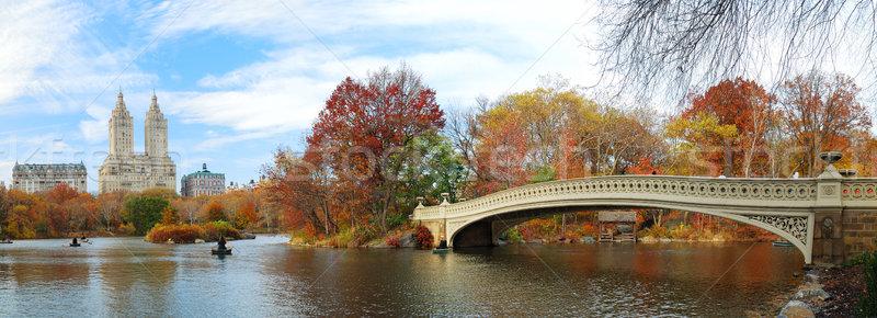 New York City manhattan Central Park panorama outono arranha-céus Foto stock © rabbit75_sto