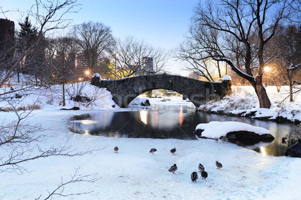 ニューヨーク市 マンハッタン セントラル·パーク 冬 橋 空 ストックフォト © rabbit75_sto