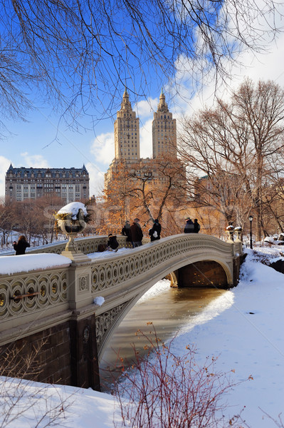 Foto stock: New · York · City · manhattan · Central · Park · panorama · inverno · gelo