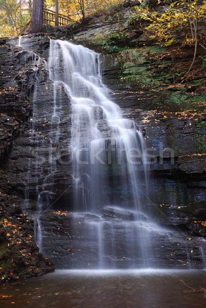 ősz vízesés hegy lomb erdő kövek Stock fotó © rabbit75_sto