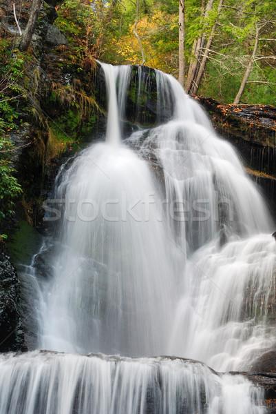 Najaar waterval berg bos loof rotsen Stockfoto © rabbit75_sto