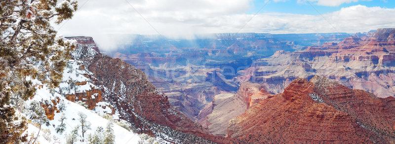 Grand Canyon panorama ver inverno neve blue sky Foto stock © rabbit75_sto