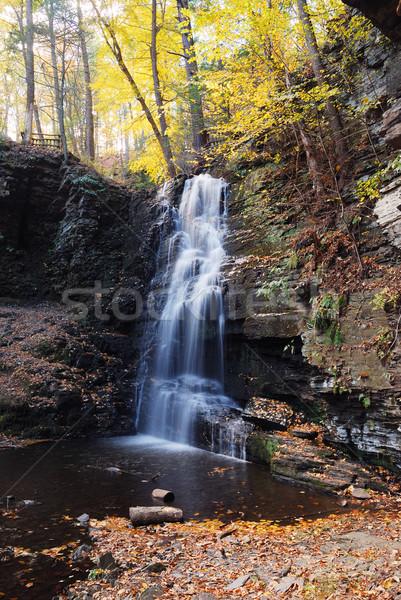 Сток-фото: осень · водопада · горные · листва · лесу · пород