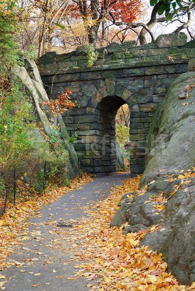 ニューヨーク市 セントラル·パーク 石 橋 秋 ツリー ストックフォト © rabbit75_sto