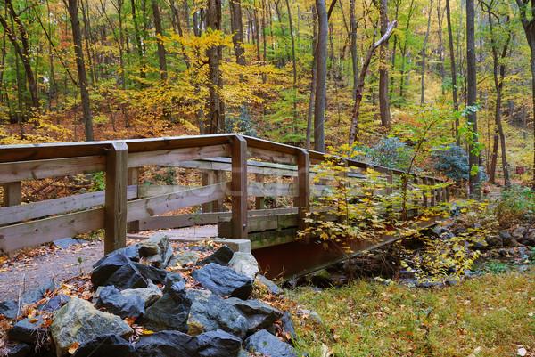 bridge  Stock photo © rabbit75_sto