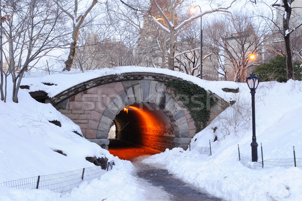 New York City manhattan Central Park inverno ponte céu Foto stock © rabbit75_sto