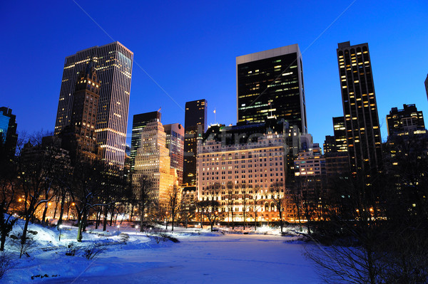Foto stock: New · York · City · manhattan · Central · Park · panorama · inverno · neve