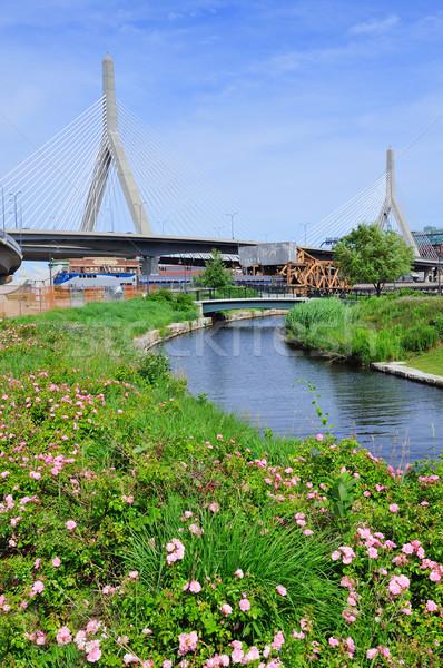 Boston Zakim Bunker Hill Bridge  Stock photo © rabbit75_sto