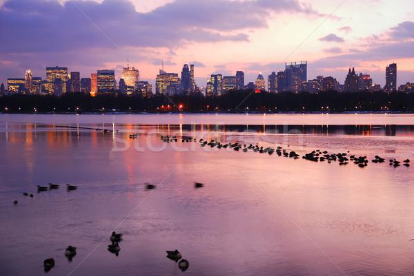 Central Park pôr do sol New York City linha do horizonte edifício maçã Foto stock © rabbit75_sto