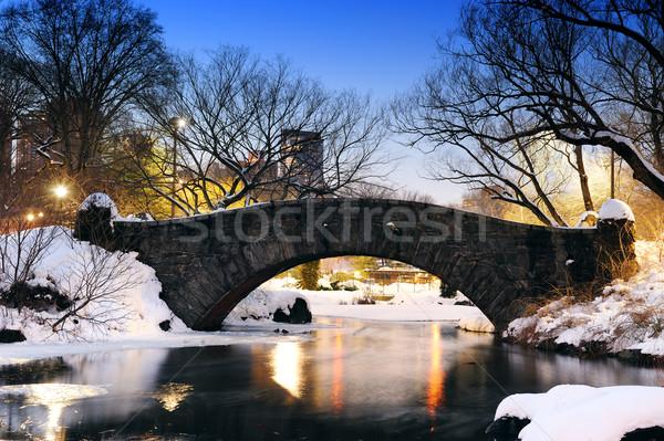 ニューヨーク市 セントラル·パーク 橋 冬 マンハッタン 湖 ストックフォト © rabbit75_sto