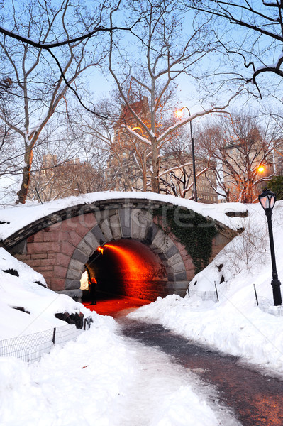 New York City manhattan Central Park Winter Brücke Himmel Stock foto © rabbit75_sto