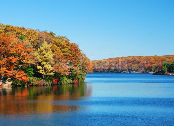 Autumn Mountain with lake Stock photo © rabbit75_sto