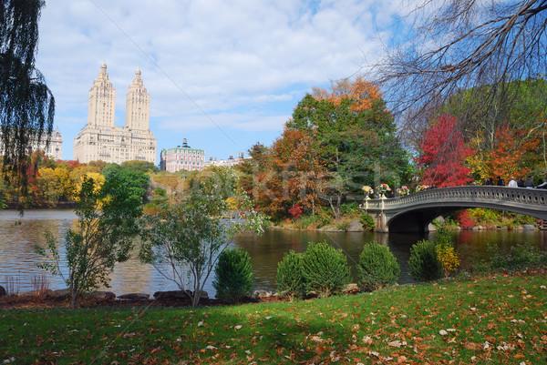New York City Central Park panorama najaar Manhattan Stockfoto © rabbit75_sto