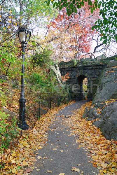 New York City Central park Stone bridge Stock photo © rabbit75_sto
