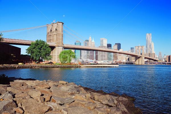 Ponte New York City manhattan linha do horizonte arranha-céus rio Foto stock © rabbit75_sto