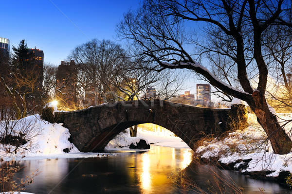 New York City Central Park pont hiver Manhattan lac Photo stock © rabbit75_sto