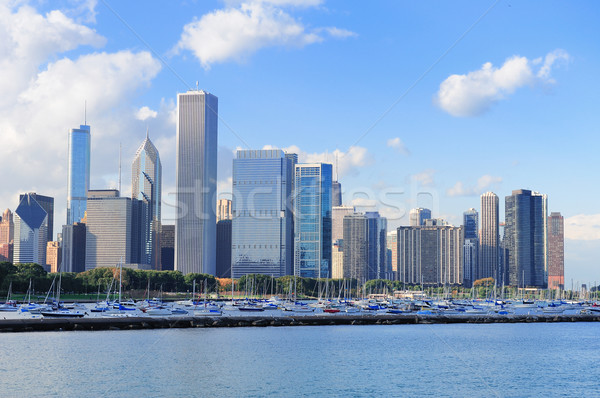 Chicago skyline meer Michigan panorama wolkenkrabbers Stockfoto © rabbit75_sto