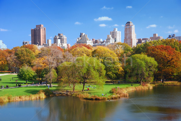 Nueva York Manhattan Central Park otono rascacielos colorido Foto stock © rabbit75_sto