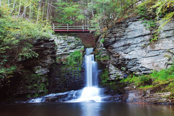Waterval brug bos berg boom achtergrond Stockfoto © rabbit75_sto