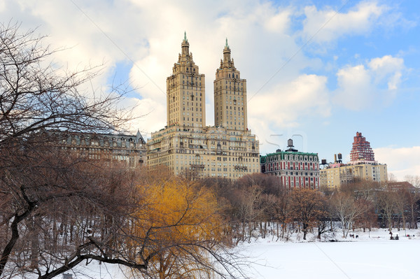 New York City manhattan Central Park inverno gelo neve Foto stock © rabbit75_sto