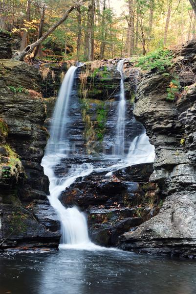 Outono cachoeira montanha árvores rochas Pensilvânia Foto stock © rabbit75_sto