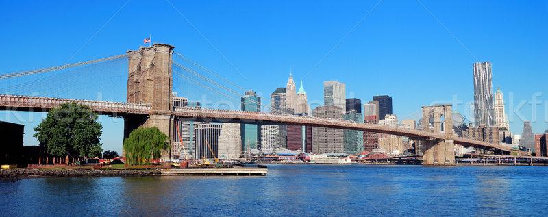 New York City Manhatta Stock photo © rabbit75_sto