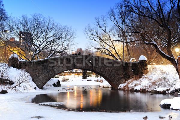 New York City Central Park brug winter Manhattan meer Stockfoto © rabbit75_sto